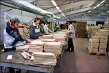 Parquet sorting (Edelweiss, Ukraine)